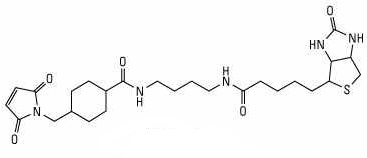 Biotin-BMCC Structure